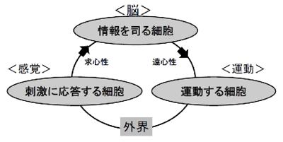 第3話_図2