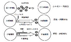 第5話_図1